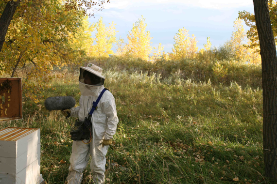 Erik_Aadahl_and_Bees