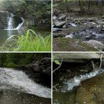"Rabbit Ears Audio Releases ""Brooks Streams Waterfalls"""