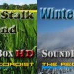 SFX Lab #2: Wind