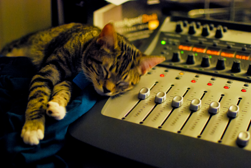 Long Day Mixing