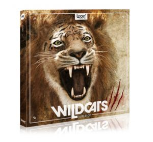 wildcats_t-l_productdetail