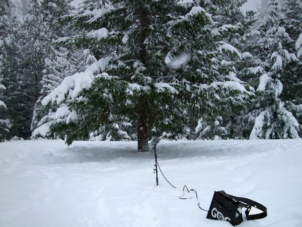 A boom mic sits in the snow recording the wintery ambience as the digital recorder sits in a GDC bag. Article written by Adriane Kuzminski.