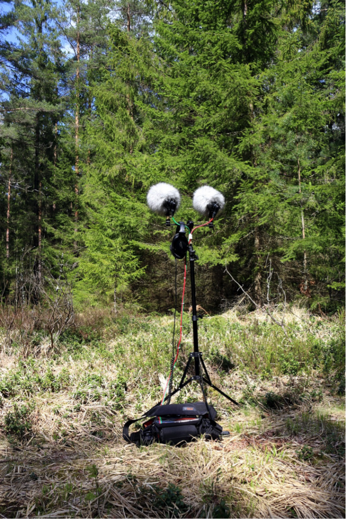 A mic setup points at trees from a forest clearing.