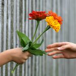 Sunday Sound Thought #97: Fearing When Thanks ≠ Giving