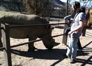 Rhino_Recording_PK
