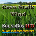 The Recordist Releases North Idaho Wind HD