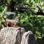 """""""Cicadas"""" – Sound Installation"""