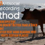 News: The Anti-Antisocial Field Recording Method by Avosound