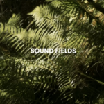 TheVinylFactory: Sound Fields: Adventures In Contemporary Field Recording